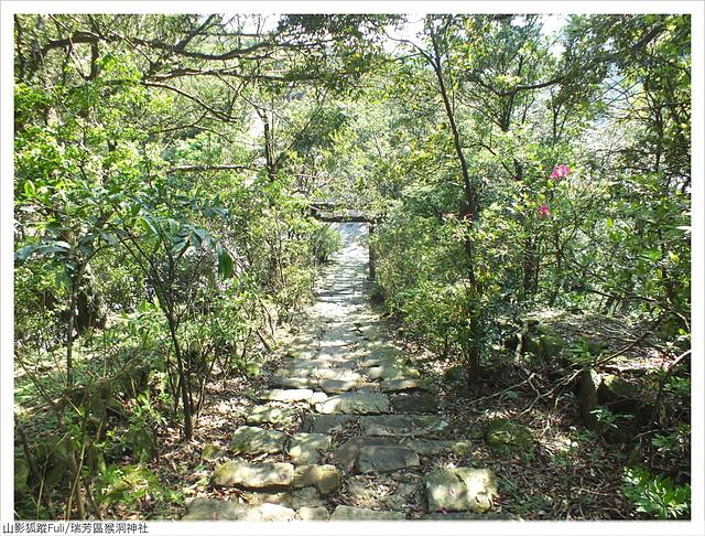 猴洞神社 (25).JPG - 猴洞神社鐘萼木