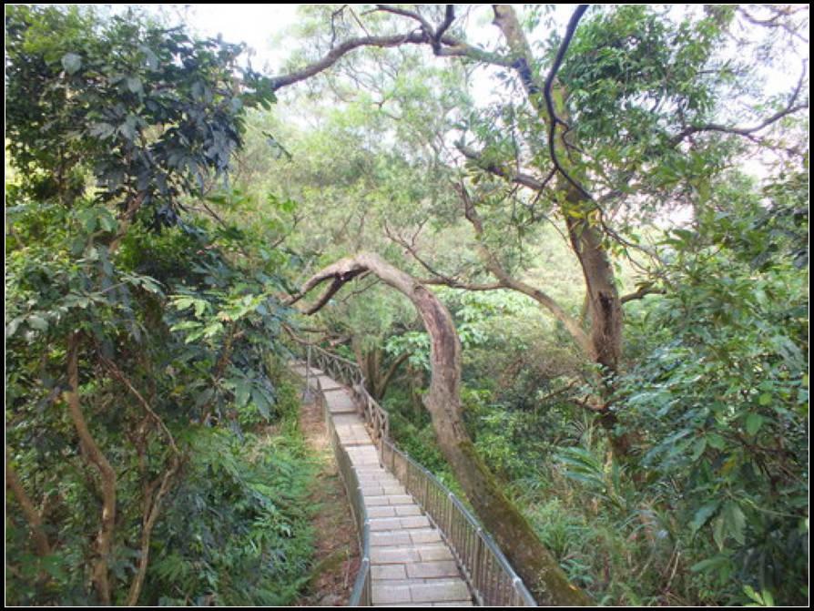 仙跡岩、景美山:仙跡岩 (2).jpg