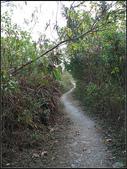 半屏山登山步道:半坪山步道 (13).jpg