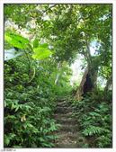 五指山登山步道:五指山登山步道 (15).jpg