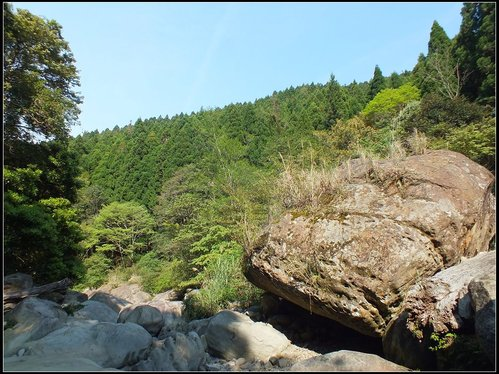 加里山登山步道:加里山 (34).jpg