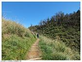 山毛櫸國家步道:048.JPG