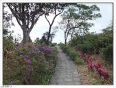 觀海步道:觀海步道 (11).jpg