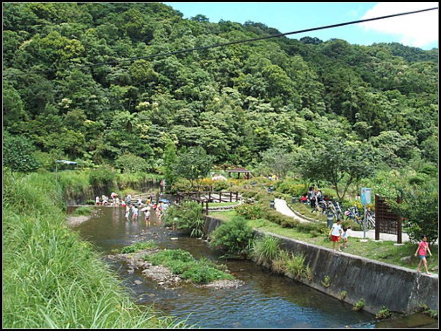 九芎根親水公園 :九芎根 (6).jpg