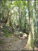 加里山登山步道:加里山 (17).jpg
