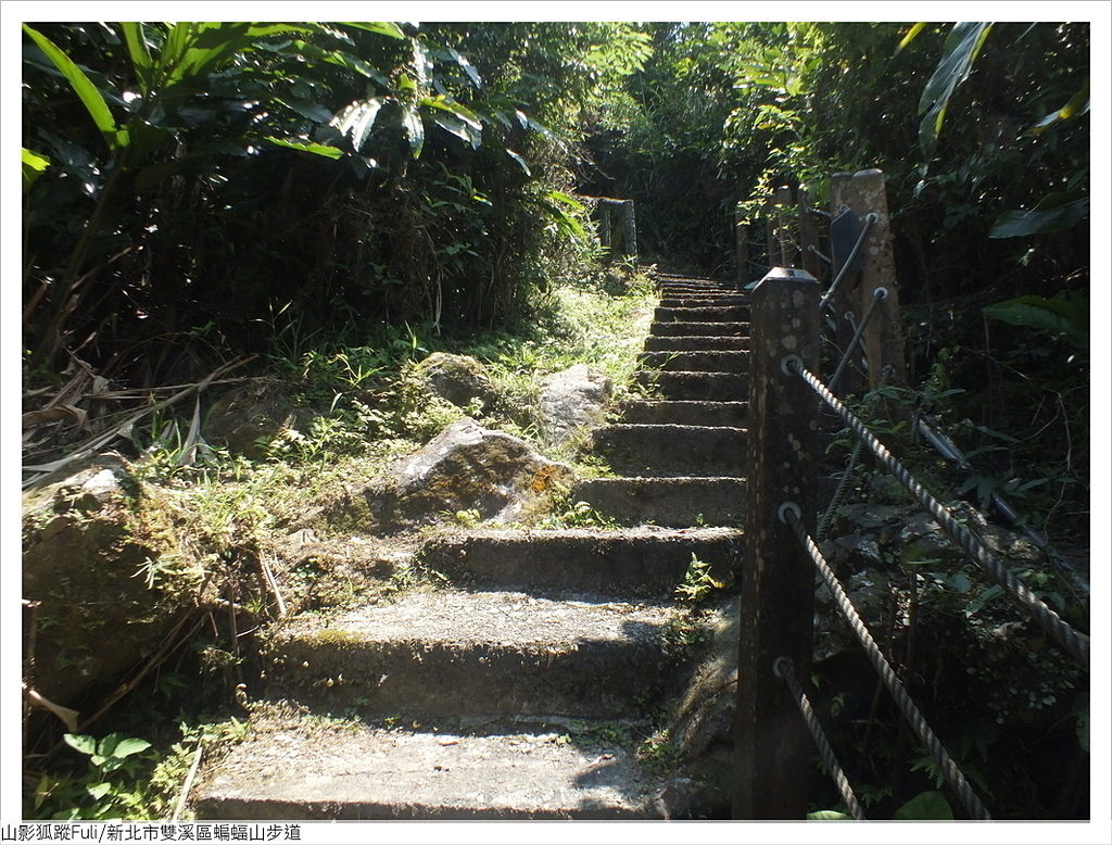 蝙蝠山步道 (16).JPG - 蝙蝠山步道