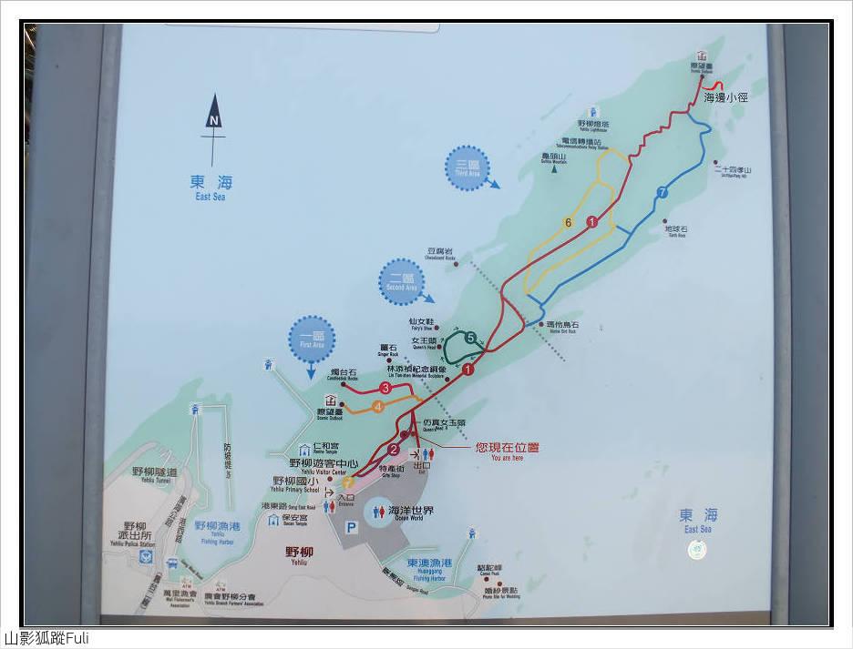 野柳地質公園野百合:野柳地質公園野百合 (47).jpg