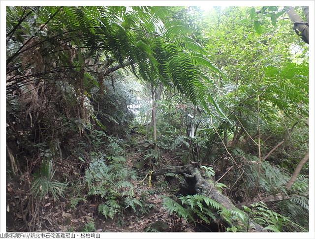 雞冠山、松柏崎山 (45).JPG - 雞冠山、松柏崎山