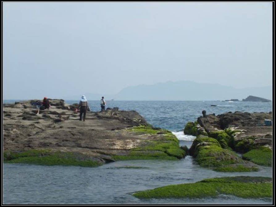 龍洞灣海洋公園、釣客小徑、望月坡:釣客小徑 (7).jpg