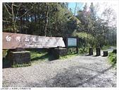 山毛櫸國家步道:004.JPG