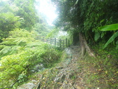 雨霧五分山:五分山稜線步道 (7).JPG