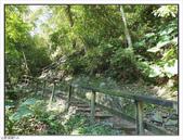 內洞森林遊樂區:內洞森林遊樂區 (45).jpg