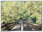 中央嶺森林步道:中央嶺森林步道 (11).jpg
