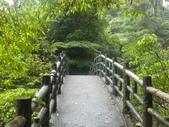 雨霧五分山:五分山稜線步道 (9).JPG