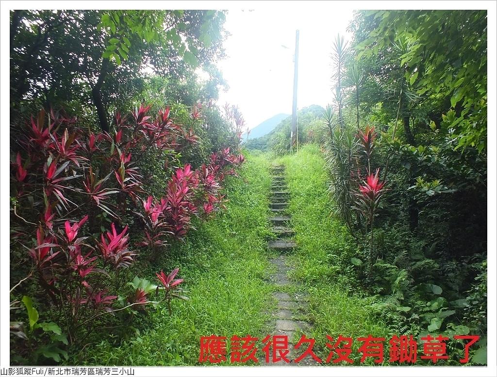 瑞芳三小山 (38).JPG - 瑞芳三小山