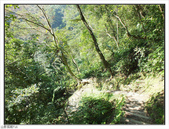 內洞森林遊樂區:內洞森林遊樂區 (46).jpg