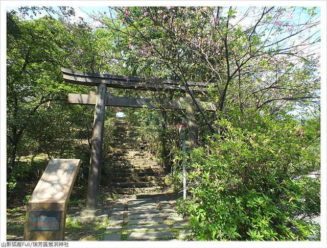猴洞神社 (26).JPG - 猴洞神社鐘萼木