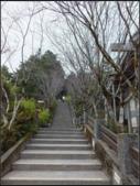 太平山莊、鐵杉林步道、原始森林步道:鐵杉林步道 (3).png