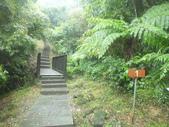 雨霧五分山:五分山稜線步道 (24).JPG