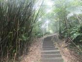 雨霧五分山:五分山稜線步道 (26).JPG