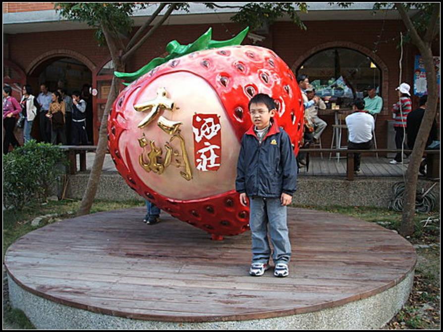 小狐狸採梅記 :採梅記 (7).jpg