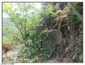 黃金瀑布、水螺山:黃金瀑布、水螺山 (8).jpg