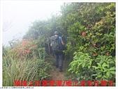 雪山尾稜北段:雪山尾稜北段 (5).JPG