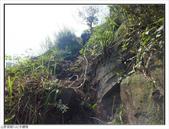 黃金瀑布、水螺山:黃金瀑布、水螺山 (11).jpg