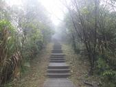 雨霧五分山:五分山稜線步道 (39).JPG