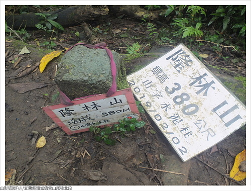 雪山尾稜北段 (37).JPG - 雪山尾稜北段