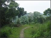 鹿廚坑步道(內環線) :鹿廚坑步道 (8).jpg