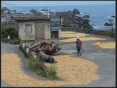 龍洞灣海洋公園、釣客小徑、望月坡:釣客小徑 (3).jpg