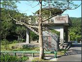 丁蘭谷生態園區 :丁蘭谷 (2).jpg