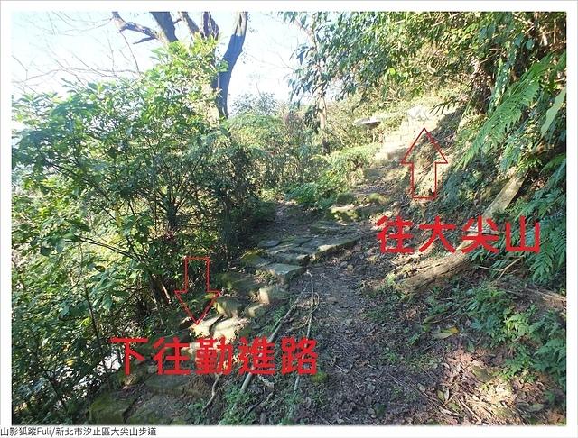 大尖山 (27).JPG - 大尖山步道