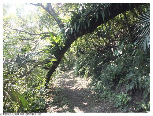 石觀音步道 (34).JPG - 石觀音步道