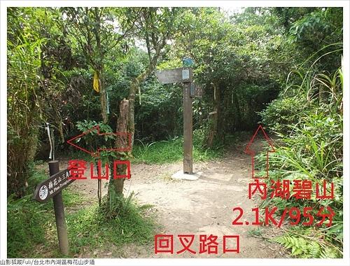 梅花山步道 (10).JPG - 梅花山步道