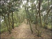 環保公園步道:環保公園 (4).jpg