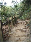 半屏山登山步道:半坪山步道 (3).jpg