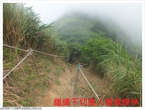 雪山尾稜北段 (43).JPG - 雪山尾稜北段