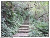 玉京山峭壁精靈:玉京山步道 (10).jpg