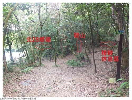 梅花山步道 (22).JPG - 梅花山步道