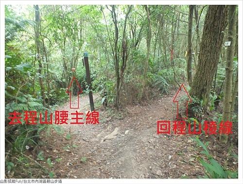 碧山步道 (7).JPG - 碧山步道