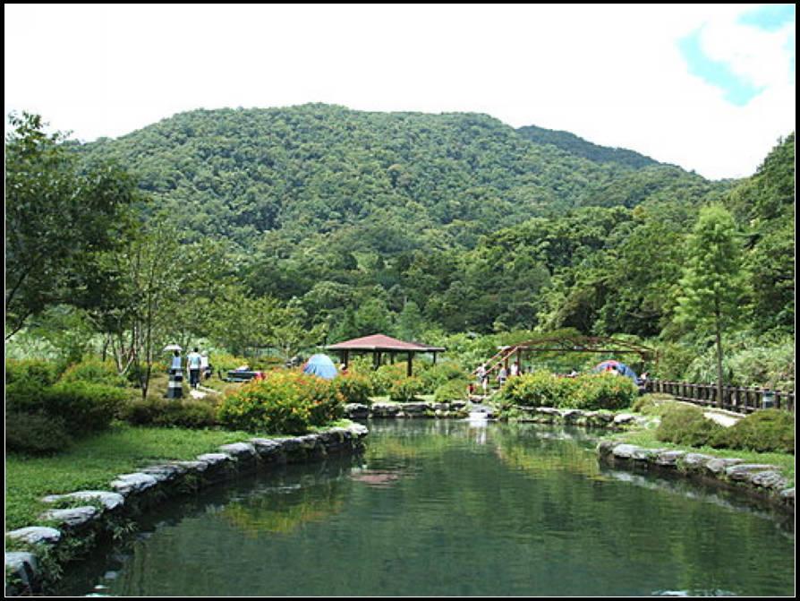 九芎根親水公園 :九芎根 (2).jpg