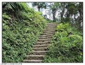 玉京山峭壁精靈:玉京山步道 (13).jpg