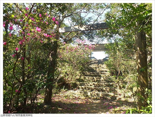 猴洞神社 (1).JPG - 猴洞神社鐘萼木