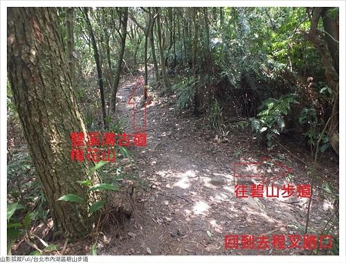 碧山步道 (35).JPG - 碧山步道
