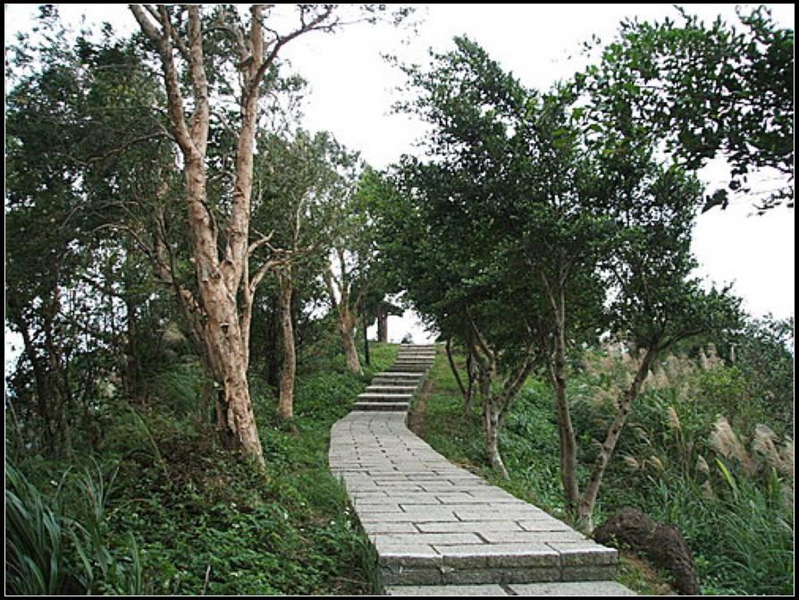 象山自然步道、奉天宮步道:象山步道 (22).jpg