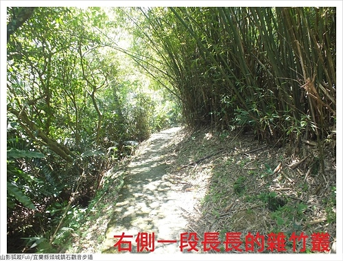 石觀音步道 (39).JPG - 石觀音步道