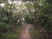 羊稠坑森林步道:羊稠坑步道 (9).jpg