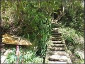 加里山登山步道:加里山 (6).jpg